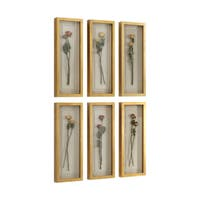 Uttermost Rosalie Long Stem Shadow Boxes (Set of 6)
