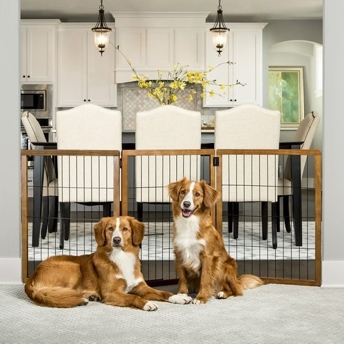 Carlson Pet Design Paw Extra Tall 3 Panel Wooden Gate