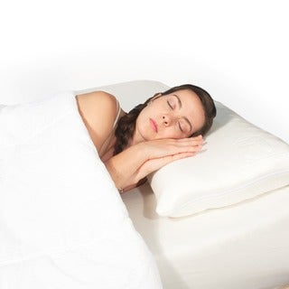 Science of Sleep Ache No More Pillow
