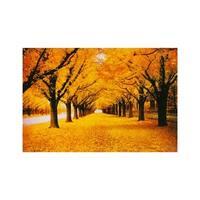 """Autumn Landscape 1000 Piece Jigsaw Puzzle 30"""" x 20"""""""