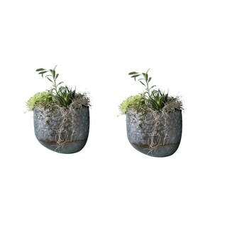 Alissa Wall Planter set of 2