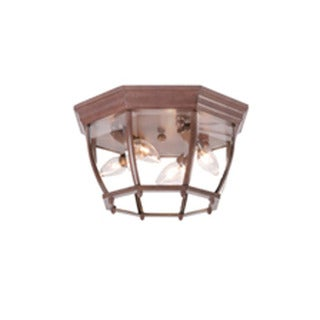 Acclaim Lighting Flushmount Collection Ceiling-Mount 4-Light Outdoor Burled Walnut Light Fixture