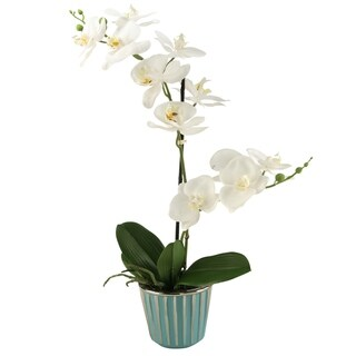 D&W Silks Cream Orchid In Round Ceramic Planter