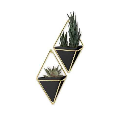 Umbra Trigg Hanging Planter Vase & Geometric Wall Decor Container (Set of 2)