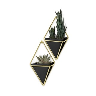 Umbra Trigg Hanging Planter & Wall Decor (Set of 2)
