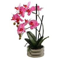 D&W Silks Pink Orchids In Small Round Planter