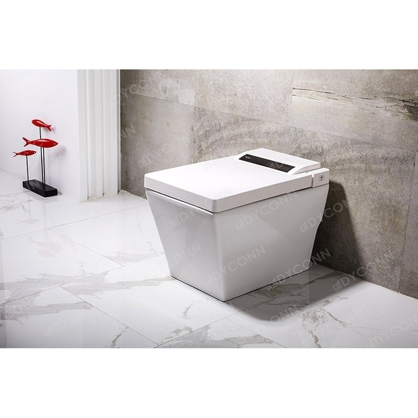 Dyconn Faucet Aqua Tankless All In One Combo Bidet Smart Toilet
