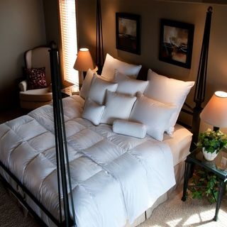 Traditional European White Down Comforter
