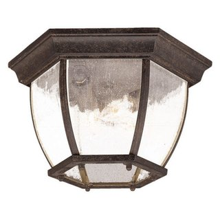 Acclaim Lighting Flushmount Collection Ceiling-Mount 3-Light Outdoor Black Coral Light Fixture