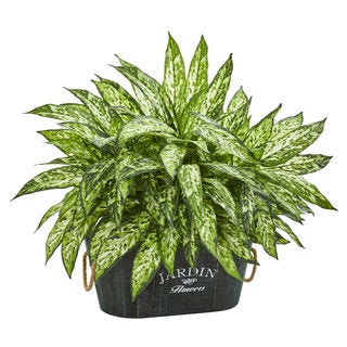 Aglonema Artificial Plant in Wood Planter