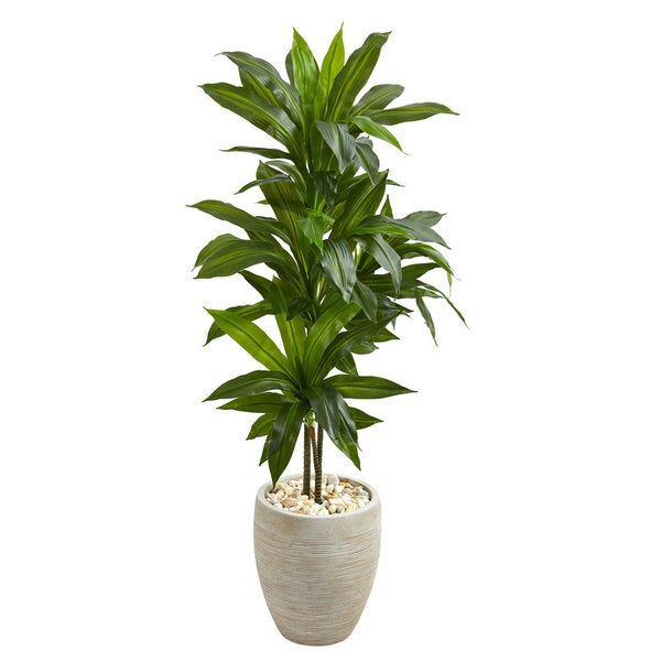 4' Dracaena Artificial Plant in Sand Colored Planter (Real Touch). Opens flyout.