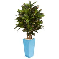 4' Croton Artificial Plant in Turquoise Planter