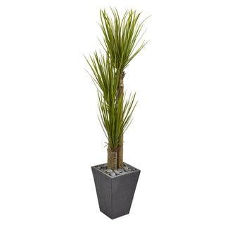 5.5' Triple Stalk Yucca Artificial Plant in Slate Planter