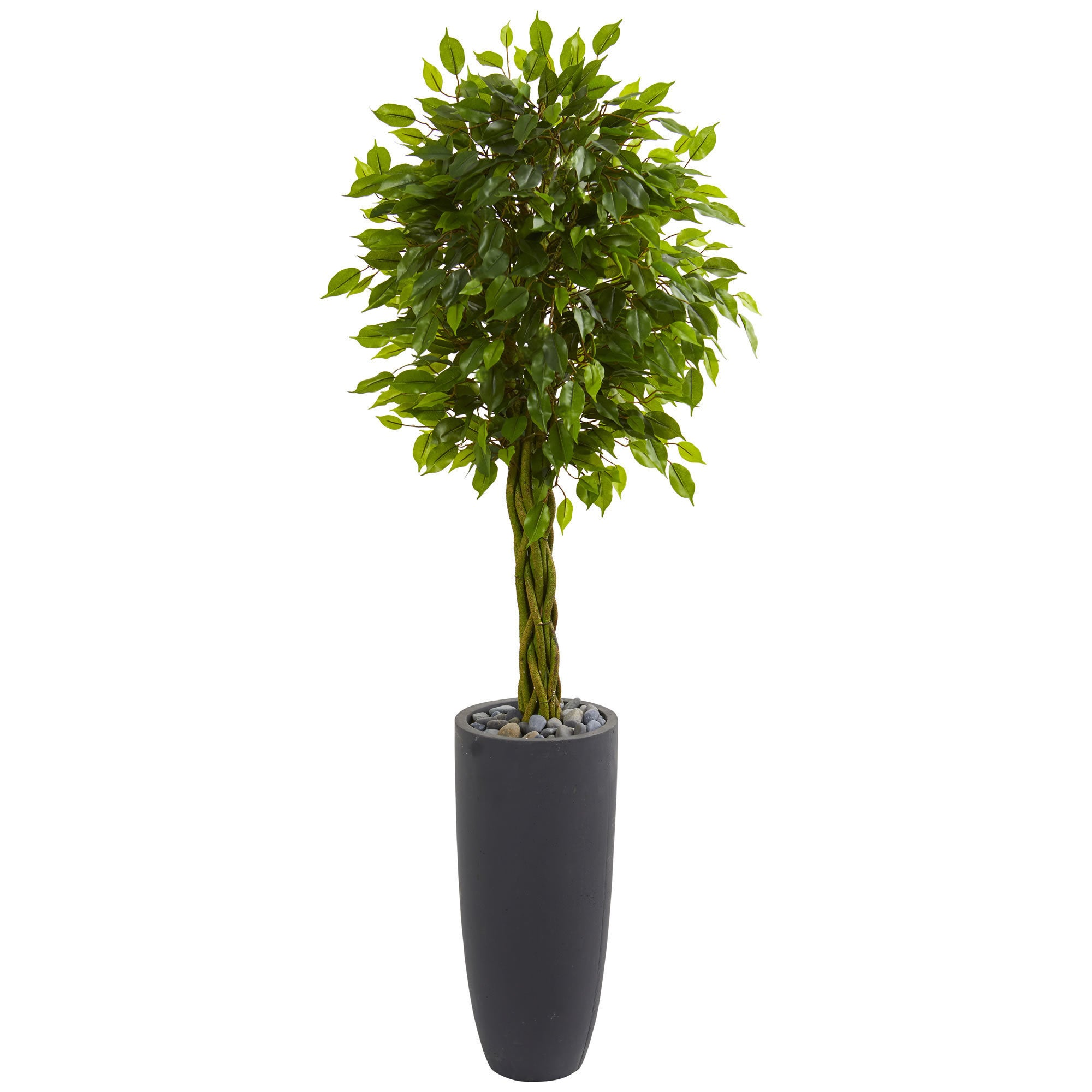 Nearly Natural 5.5' Braided Ficus Artificial Tree in Gray...