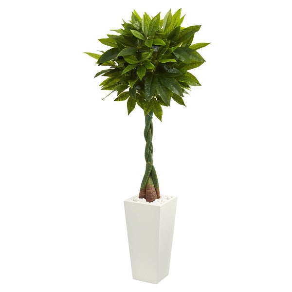 Home Depot Real Christmas Tree Prices: Shop 5.5' Money Artificial Tree In White Tower Planter