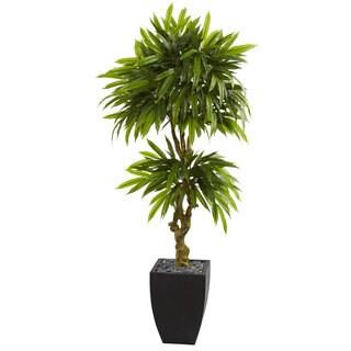 5.5u0027 Mango Artificial Tree In Black Wash Planter UV Resistant (Indoor /Outdoor)
