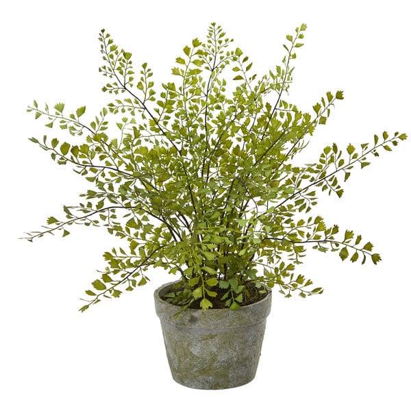 Maiden Hair Artificial Plant in Decorative Planter