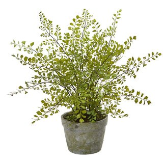 Maiden Hair Artificial Plant in Decorative Planter