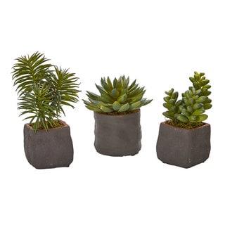 Mixed Succulent Trio Artificial Plant (Set of 3)
