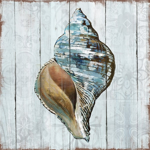 Shop Portfolio Canvas Decor Beachwood Shells II Wrapped Canvas Wall ... 8f5692eca