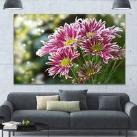Designart 'Purple Chrysanthemum Flower' Floral Canvas Wall Art