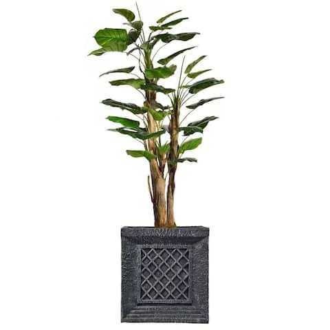 """87"""" Tall Scindapsus Aureus Burlap and Fiberstone planter"""