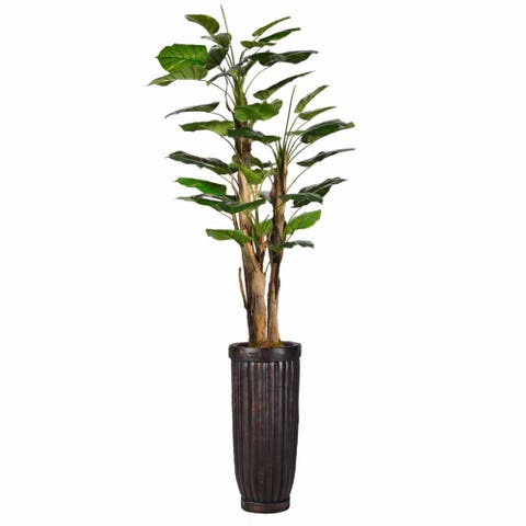 "72"" Tall Scindapsus Aureus Burlap and Fiberstone planter"