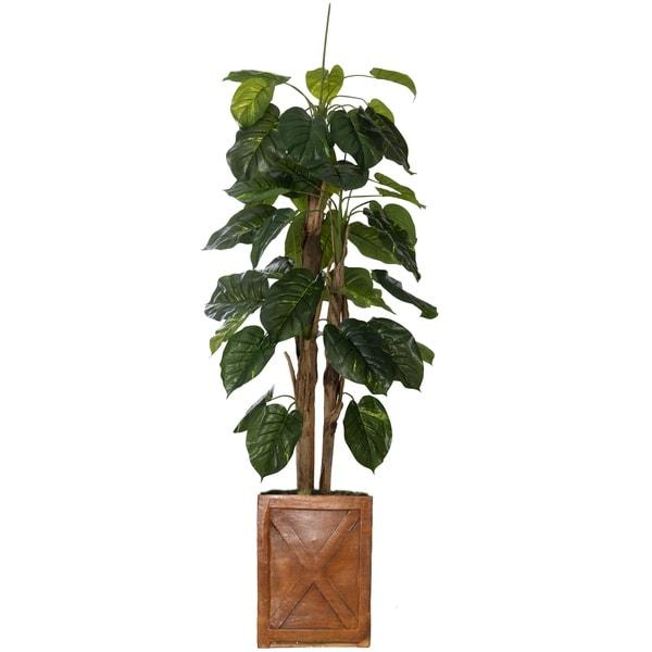 """75"""" Tall Scindapsus Aureus Burlap and Fiberstone planter"""