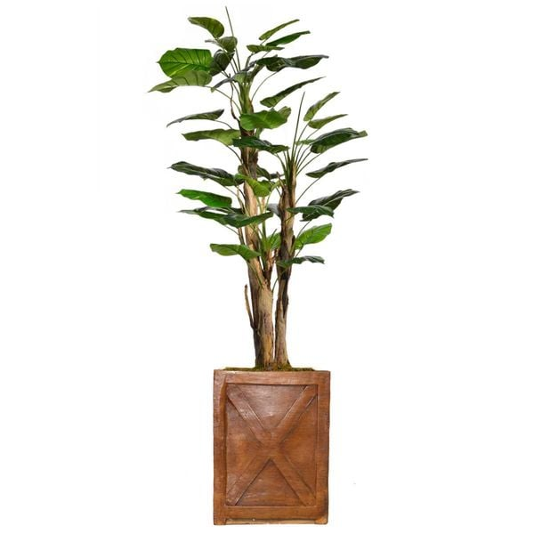 "71.6"" Tall Scindapsus Aureus Burlap and Fiberstone planter"