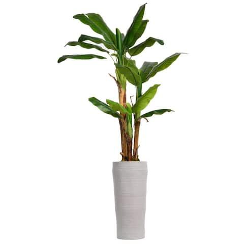 "81"" Tall Banana Tree with Burlap Kit and 29"" Oval Fiberstone planter"