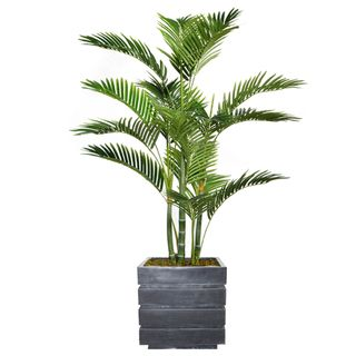 "57.5"" Tall Palm Tree with Burlap Kit and Fiberstone planter"