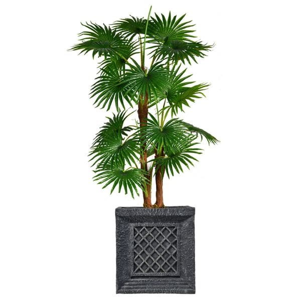 "69"" Tall Fan Palm Tree, Burlap Kit and Fiberstone planter"
