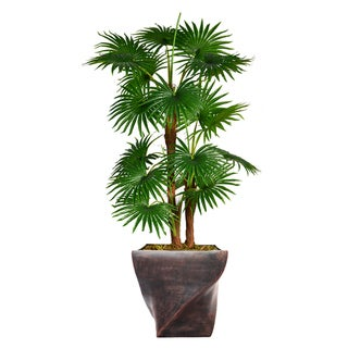 "52.8"" Tall Fan Palm Tree,  Burlap Kit and Fiberstone planter"