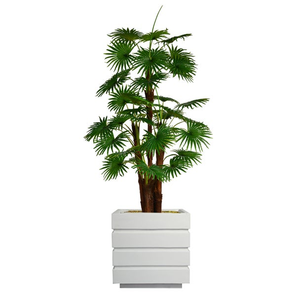 "79.5"" Tall Fan Palm Tree, Burlap Kit and Fiberstone planter"