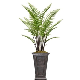 "60.8"" Tall Fern Plant with Burlap Kit and Fiberstone planter"