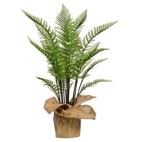 "42"" Tall Fern Plant with Burlap Kit"