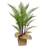 "42"" Tall Fern Plant with Burlap Kit"