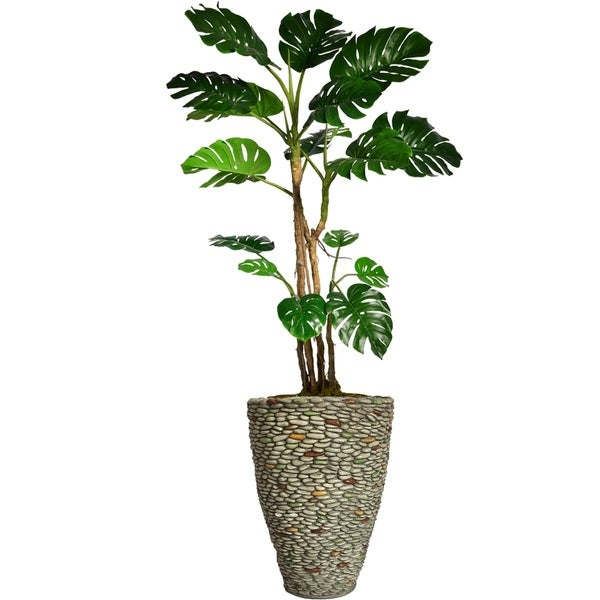 "85.5"" Tall Monstera with Burlap Kit and Fiberstone planter"
