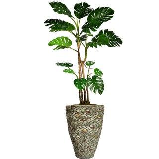 "81"" Tall Monstera with Burlap Kit and Fiberstone planter"