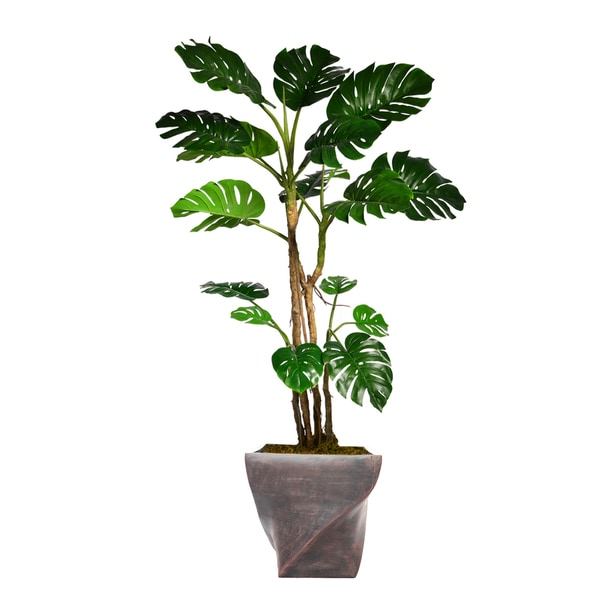 "76.8"" Tall Monstera with Burlap Kit and Fiberstone planter"