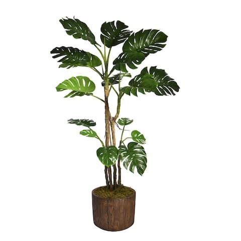 "90.8"" Tall Monstera with Burlap Kit and Fiberstone planter - 91"""