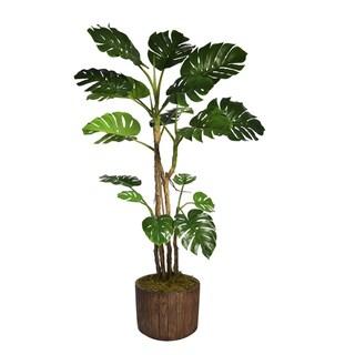 "90.8"" Tall Monstera with Burlap Kit and Fiberstone planter"