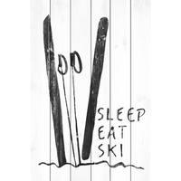 'Sleep Eat Ski' Painting Print on White Wood