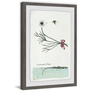'Renoncule D'eau' Framed Painting Print