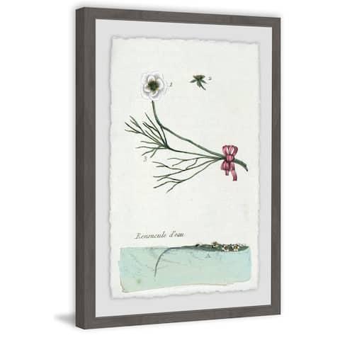 Marmont Hill - Handmade Renoncule Deau Framed Print