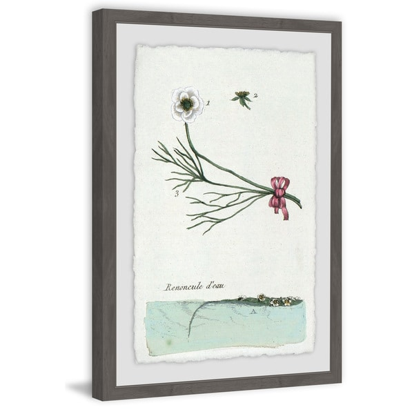 Marmont Hill - Handmade Renoncule Deau Framed Print. Opens flyout.