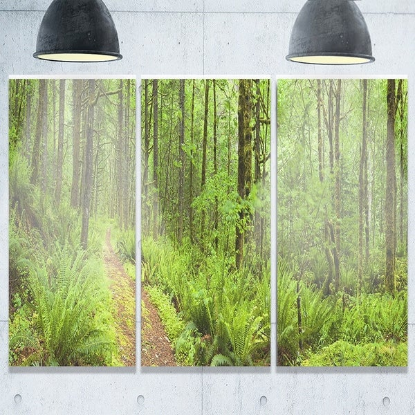 Phase1 Designart - Lush Forest Path Columbia River - Forest Glossy Metal Wall Art -  DESIGN ART, MT11137-3P