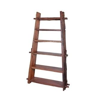 Large Kiva Ladder Shelf