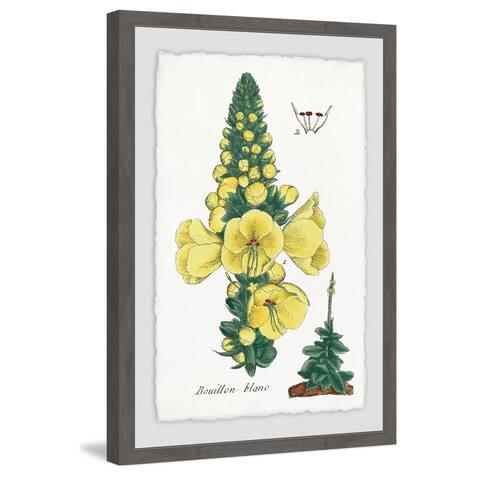 Marmont Hill - Handmade Yellow Monkshood Framed Print