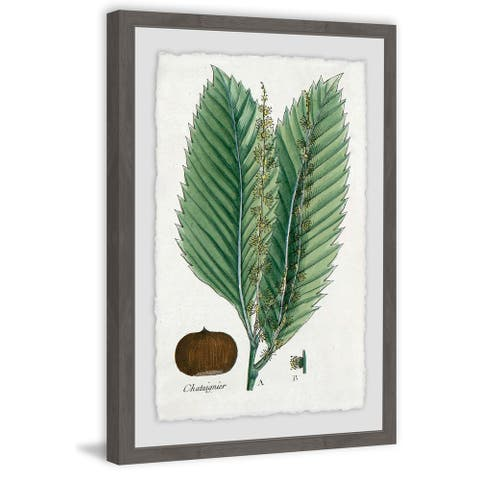 Marmont Hill - Handmade Flore des Environs de Paris Framed Print
